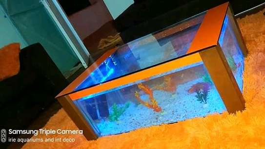 Coffee Table Aquariums. image 4
