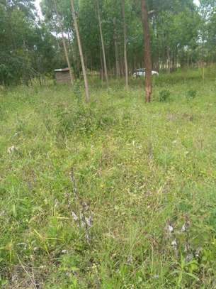 45*100 plot for sale