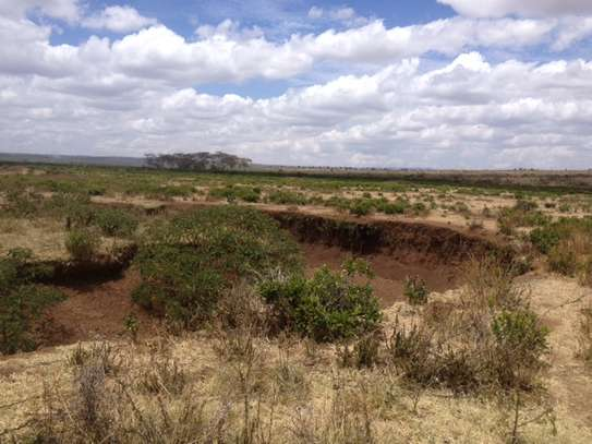 43.9 ACRES OF FERTILE AGRICULTURAL LAND IN LAIKIPIA