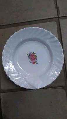 Melamine  Dinner Plate image 2