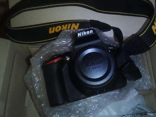 Nikon D3500 image 2
