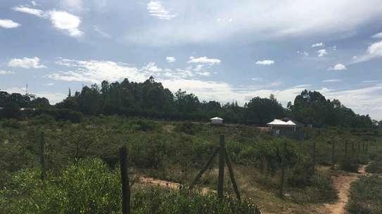 Prime land for sale in Nanyuki Muthaiga image 4