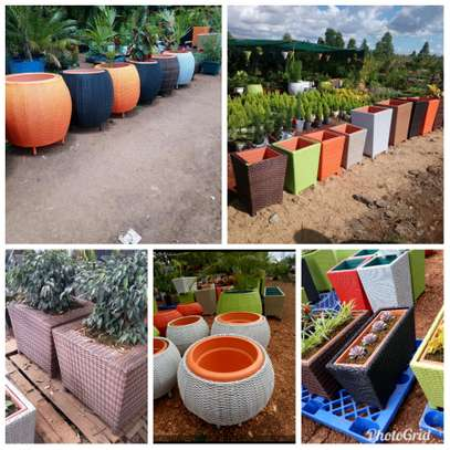 Flower planters for sale