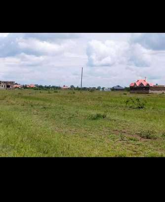 Plot for sale 40*80 Ruiru bypass image 1