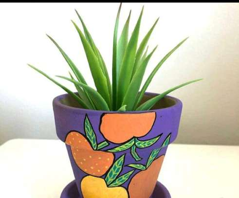 Pimped pot plants image 8