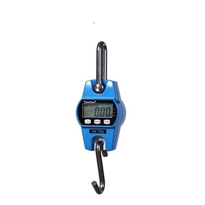 Digital electronic small weight 300kg crane hanging Scale image 1