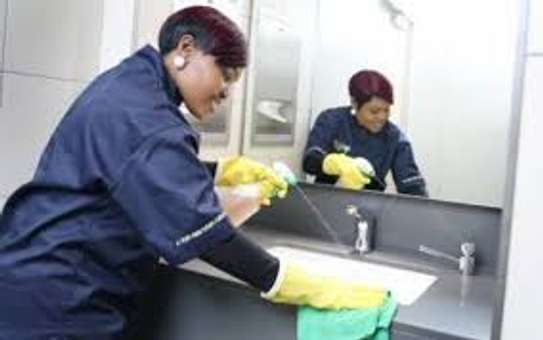 Cleaning Professional Trainer/ Domestic Agency Manager image 1