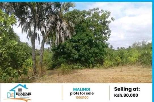 Buying Plots at Malindi Kenya image 1