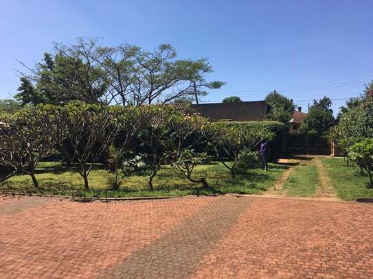 Furnished 4 bedroom house for rent in Runda image 3