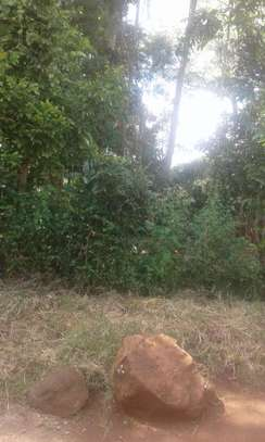 Land for sale in ndhiwa
