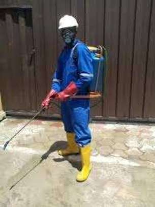 Bestcare Fumigation and Pest control Service image 4