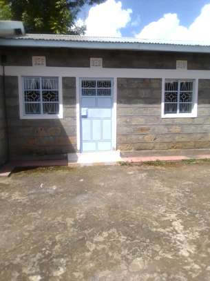 Sq for rent in NJORO