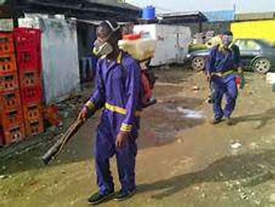 Bestcare Bed Bug Fumigation And Pest Control Services image 1