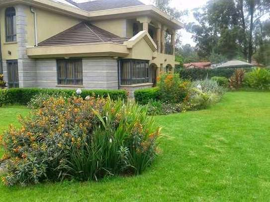 Landscaping image 3