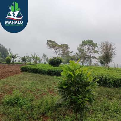 0.5 ac land for sale in Limuru Area image 2