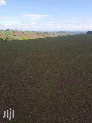 100 Acres Of Land In Narok