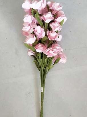 flower image 7