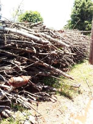 Firewood image 3