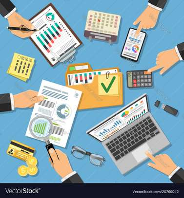Accounting, Auditing, Taxation, Financial Investigations image 3