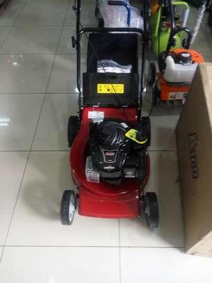 Lawn mower suppliers in Kenya