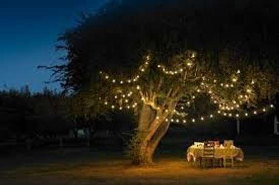 High flexible Christmas Lights 10meters image 1