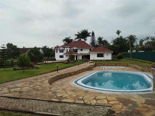 Nyari - House image 2