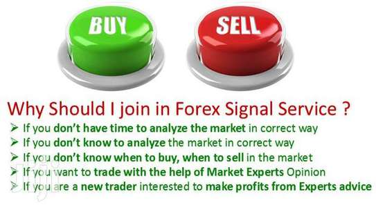we train forex trading and sell fx signals image 2