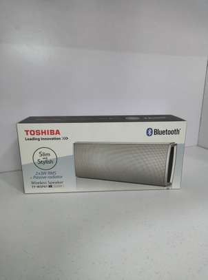 TOSHIBA Wireless Bluetooth Speakers