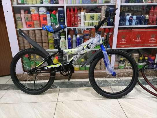 Size 20 Bikes