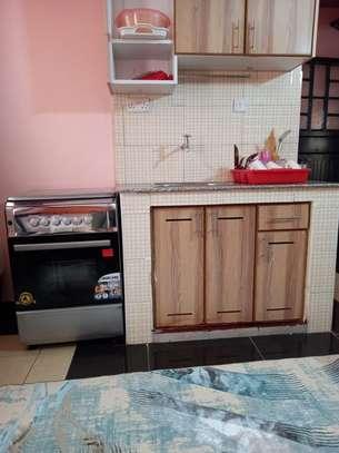 furnished studio apartment Kasarani seasons image 2