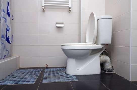 Are you looking for:Toilet Installation | Plumber| Bathroom Remodel | Shower or Bathtub | Toilet Repair | Bathtub Repair | Plumbing & More ? image 3