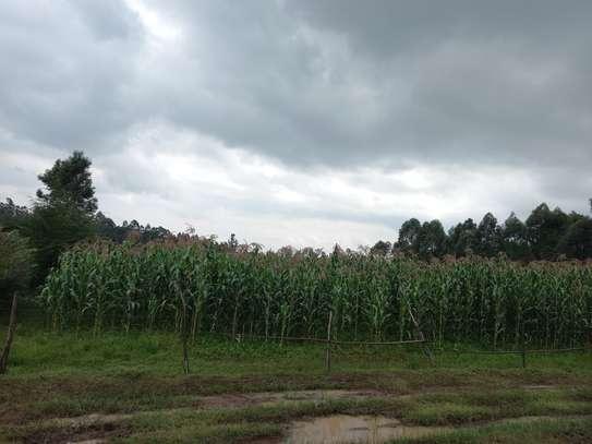 Anex eldoret plot or half acre