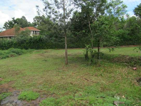 North Muthaiga - Land, Residential Land image 14
