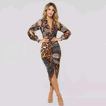 Animal Print Dress image 1