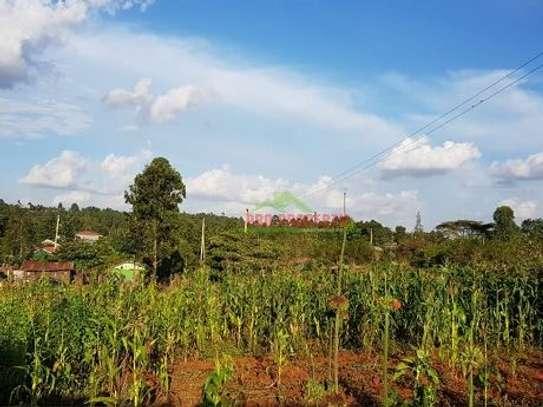 Gikambura - Land image 8