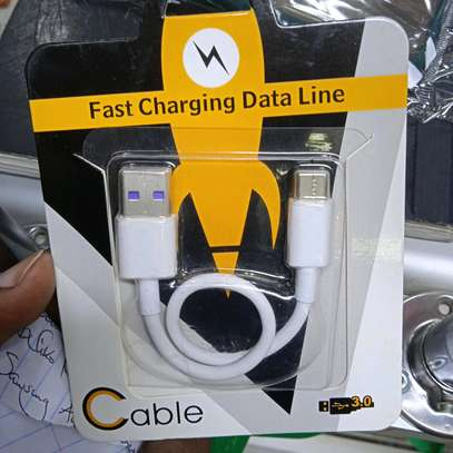Type C power bank Cable(Short) with 3.0 High Speed Fast Charge image 1