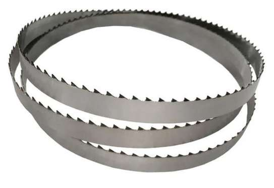 High Quality bone saw blades. image 1