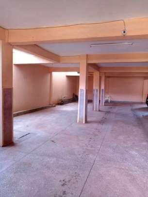 1 bedroom apartment for rent in Embu West image 10