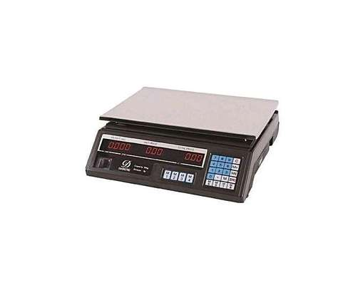 ACS Digital Weighing Scale 30kg image 1