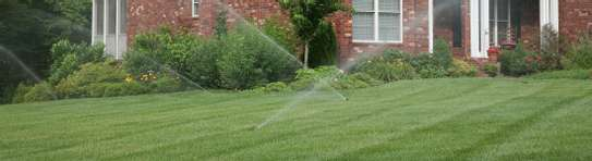 Reliable & Affordable Gardeners |High Quality Gardening & Landscaping.Contact us today image 13