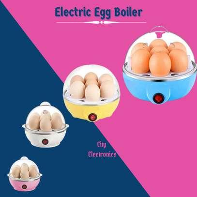 Electric Egg Boiler image 1