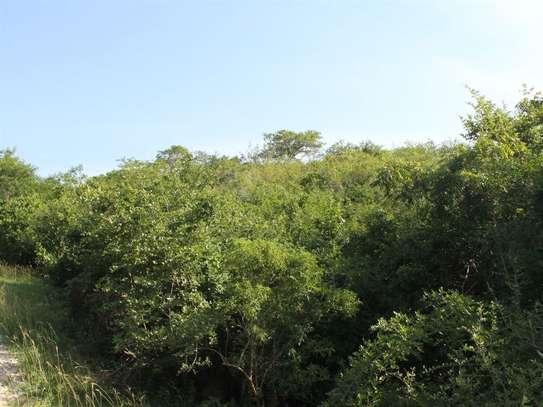 Kilifi - Land image 10
