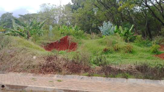 0.5 ac residential land for sale in Thome image 6