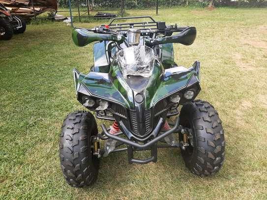 Quadbike image 1