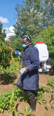 motorized sprayer image 2
