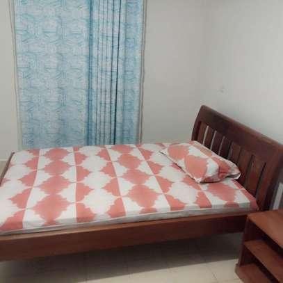 furnished 2 bedroom image 5