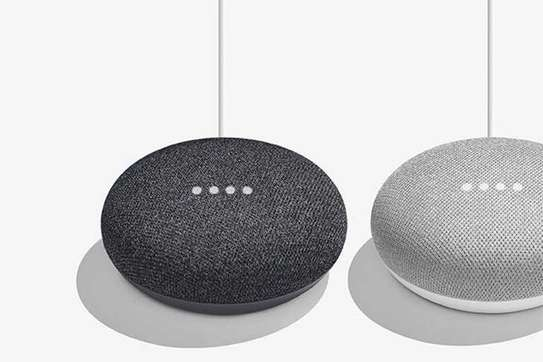 Google Home Mini-[Chalk] WWD image 2