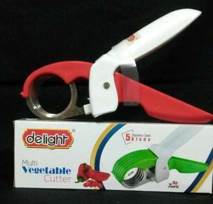 Delight multi vegetable cutter with 5blade image 1