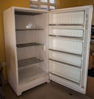 Gibson Heavy Duty Commercial Freezer image 1