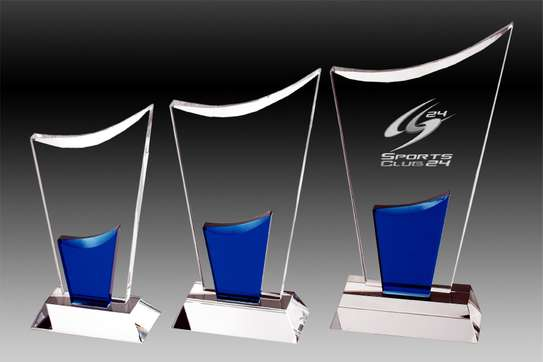 Branded Event Trophies image 1